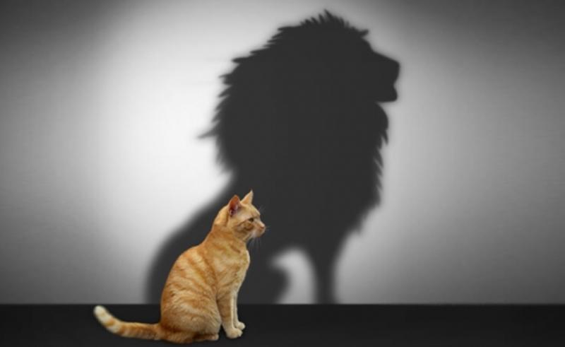 Как психолог помогает поднять самооценку?